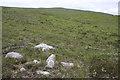 NC4640 : Grassy Moorland, Fuaran Mòr by Dorothy Carse