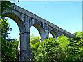 SX0557 : Treffry Viaduct, Luxulyan, Cornwall by Mary Williams