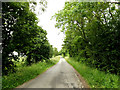 TL9356 : Darkings Lane, Great Green by Geographer