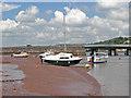 SX9372 : Near Shaldon Bridge by Alan Hunt