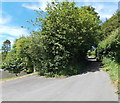 SS9983 : Blocked NW end of Chapel Hill, Llanharan by Jaggery
