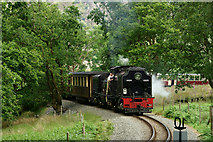 SH5848 : Steaming Above Beddgelert by Peter Trimming