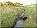 NR3868 : Finlaggan River by M J Richardson