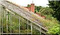 J3372 : The Tropical Ravine, Botanic Gardens, Belfast - June 2014(3) by Albert Bridge