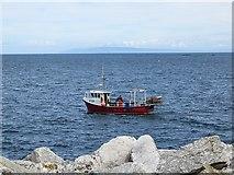 D3115 : Creel boat, Glenarm by Richard Webb