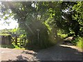 SX3956 : Footpath and road, Greeps by Derek Harper