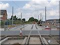 SK5636 : Wilford Lane tram stop, looking north by Alan Murray-Rust