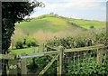 ST4601 : Wessex Ridgeway at the Stoke Water valley by Derek Harper