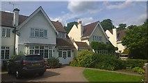 TQ1169 : Lower Hampton Road by James Emmans