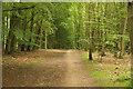 SK6160 : Bike trail by Richard Croft