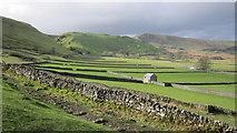 SK1482 : Dry stone wall field patterns by Chris McAuley