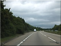 TL6902 : Lay-by on A12 south-west of Galleywood by David Smith