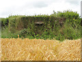 TG1527 : Pillbox on field's edge by Evelyn Simak