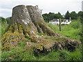 NT5334 : Stout stump by M J Richardson