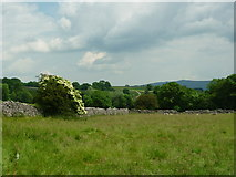 SE0063 : From Sedber Lane to Halfway House Farm by Carroll Pierce