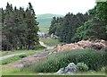 NT4908 : Track on Newton Hill by Jim Barton