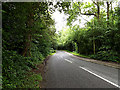 TQ1929 : Hammerpond Road, Mannings Heath by Adrian Cable