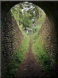 TQ0950 : View from beneath an archway at Briary Hill, Dick Focks Common by Stefan Czapski