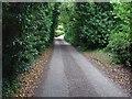 SU8179 : Star Lane, Knowl Hill by Alan Hunt
