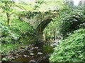 SE0024 : Spa Bridge, Cragg Vale by Humphrey Bolton