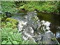 SE0024 : Rough weir on Cragg Brook by Humphrey Bolton
