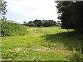 TM1589 : RAF Tibenham - Site 2 by Evelyn Simak