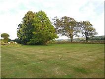 TQ4312 : Trees at Ringmer Park by Paul Gillett