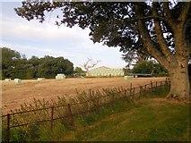 TQ4312 : Hayfields at Ringmer Park by Paul Gillett