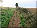 TF9643 : Debris on the path by Hugh Venables