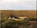 TG0244 : Blakeney Salt Marsh by Hugh Venables
