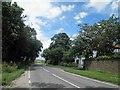 TF2195 : B1203 near Hoe Hill farm by Steve  Fareham