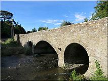 SO3958 : Bridge over the Arrow by Des Blenkinsopp