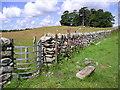 SH5867 : Footpath Near Pant-y-Cyff by Chris Andrews