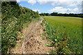 SW5333 : A defined path near Tregethas Farm by Bill Boaden