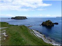 D0445 : Sheep Island, Ballintoy by Kenneth  Allen