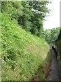 SU6836 : Small curved cutting, south of Brickiln Farm by Christine Johnstone