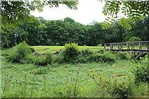 NY0265 : Old Caerlaverock Castle Site by Billy McCrorie