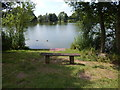 TM0954 : Bench at Needham Lake by Hamish Griffin