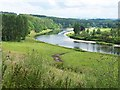 NT6431 : Bend on the River Tweed by Oliver Dixon