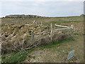 SM7109 : Rabbit exclosure by Hugh Venables