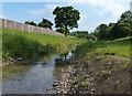 SK5501 : Lubbesthorpe Brook in Braunstone by Mat Fascione