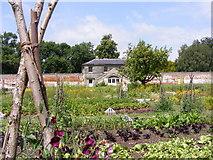 SJ9921 : Walled Garden by Gordon Griffiths