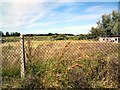 SH7778 : Overgrown playing fields by Gerald England