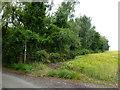 TL2379 : Footpath on the edge of Wennington by Richard Humphrey