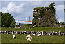 M4142 : Castles of Connacht:Tawnaghmore, Galway (2) by Mike Searle