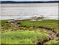 SJ4082 : River Mersey, Speke and Garston Coastal Reserve by David Dixon