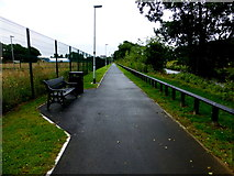 H4473 : Riverside path, Lisanelly, Omagh by Kenneth  Allen