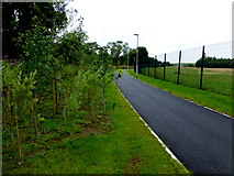 H4473 : Riverside path, Lisanelly by Kenneth  Allen