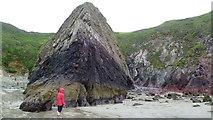 SM7624 : Rocky cliff at Caerfai Bay near St. Davids, Pembs by Jeremy Bolwell
