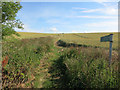 TL6048 : Footpath to West Wickham by Hugh Venables